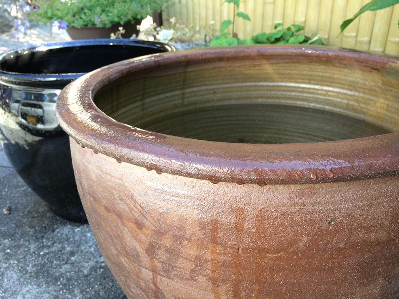 メダカの水槽 焼き物