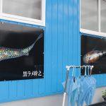 【新種発見】静楽庵で透明鱗、非透明鱗に並ぶ第三のメダカを見せてもらった